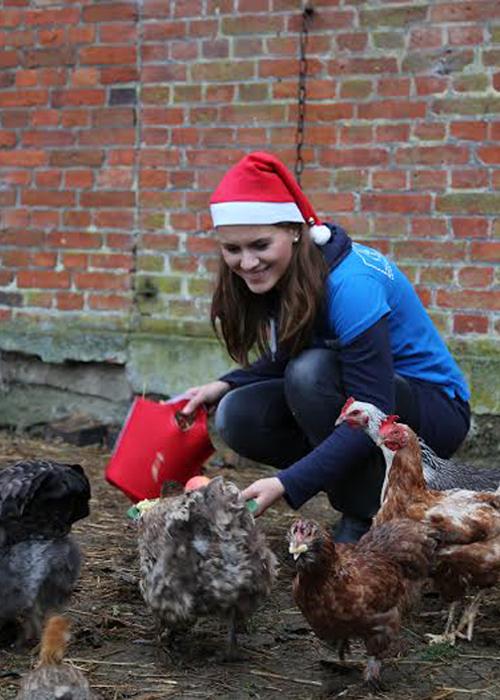 Denise vom Tierschutzbüro kümmert sich um die geretteten Hühner